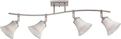 Quoizel DH1404AN Duchess Adjustable Track Kits Lighting, 4-Light, 400 Watts, Antique Nickel (13
