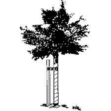 SIW Wood Tree Stakes Wood, 1.5