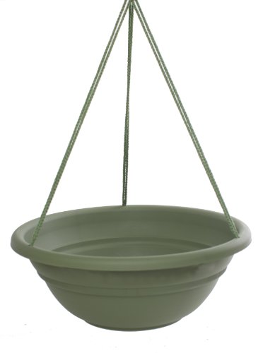 Bloem MBHB151742-12 12-Pack Milano Hanging Basket/Planter, 17-Inch, Living Green by Bloem