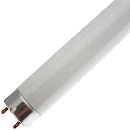Industrial Performance F32T8/835/ECO, 32 Watt, G13 Base, 4ft Fluorescent Tube Light Bulb (25 Bulbs)