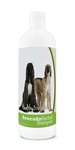 Healthy Breeds Herbal Avocado Dog Shampoo for Dry Itchy Skin for Afghan Hound  - OVER 200 BREEDS - For Dogs with Allergies or Sensitive Skin - 16 -