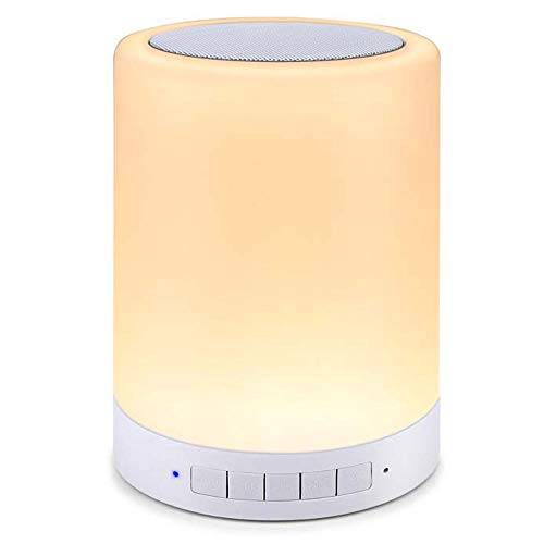 (BARISC Touch Control Night Lamp with Bluetooth Speaker, Portable Wireless Music Player with Bedside/Table/ Outdoor Color Changing Dimmable LED Lights, Metal Handle/TF Card/AUX-in Supported)