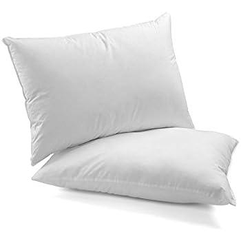 Amazon Com Homien 2 Pack Hotel Collection Plush Pillow