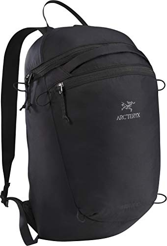 Arc'teryx Index 15 Backpack (Black)