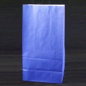 Blue Paper Sack Lunch 5 3125 product image