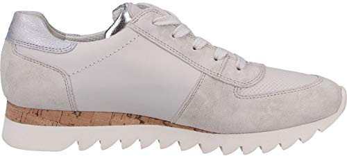 Shark Off Green Trainer Paul Sole Up White 4485 Lace 1S5UxqTw