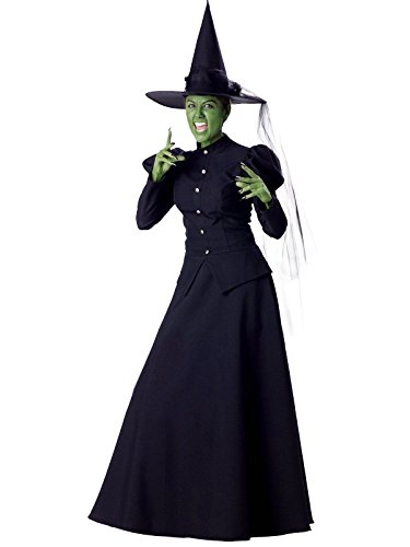 Witch Costumes (InCharacter Women's Witch Costume, X-Large)