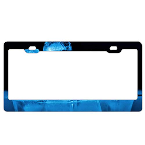 (YEX Abstract Tiger On Sofa License Plate Frame Car Tag Frame Auto License Plate Holder 12