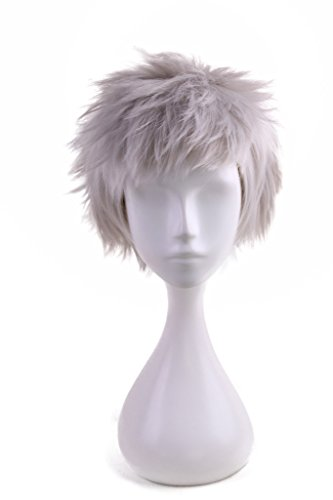 HH Building Fashion BOb Short Pixie Cut Fluffy Synthetic Charming Silver Gray Wig for $<!--$19.99-->