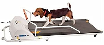 Top Dog Treadmills