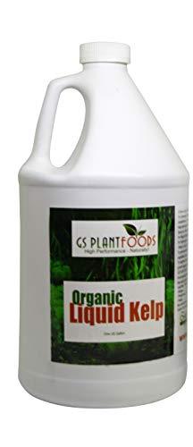 Liquid Kelp Organic Seaweed