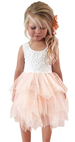 2Bunnies Girl Beaded Peony Lace Back A-Line Tiered Tutu Tulle Flower Girl Dress (No Applique Pink, -