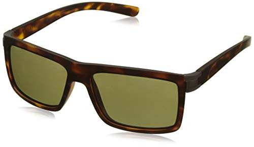 Satin Tortoise soleil Lunettes Serengeti Medium Brera de Satin Polarized Large Brera Gun 555nm w0w85q