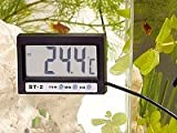 infactory Digital Aquarium Thermometer with LCD Clock