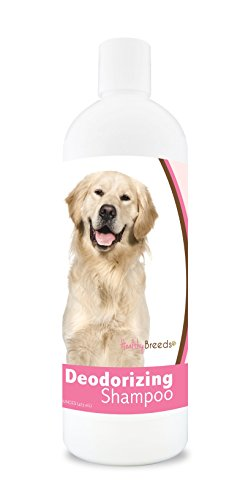 (Healthy Breeds Dog Deodorizing Shampoo For Golden Retrievers - Over 200 Breeds - For Itchy Sensitive Dry Flaking Scaling Skin & Coat - Hypoallergenic Formula & Ph Balanced - 16 Oz)