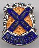 Newquay - Cornwall Cornish Town Flag / Crest Pin Badge
