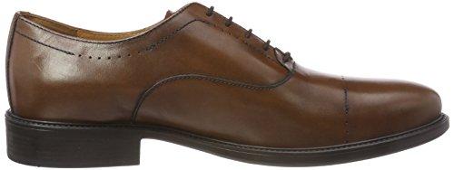 Hombre a Uomo Cordones Zapatos para Cognac Marrón Oxford de Carnaby Geox 8CwAxnqO8