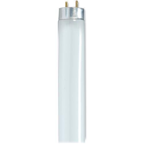 S8424 Satco 28-watt 48'' T8 Fluorescent Tube - Cool White - 28 W - G13 - 30 / Carton by Satco