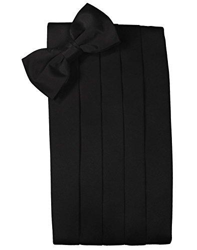 Cardi Mens Strata Black Silk Bowtie and Cummerbund by Cardi