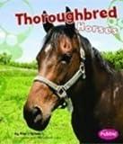 Thoroughbred Horses, Kim O'Brien, 1429622369