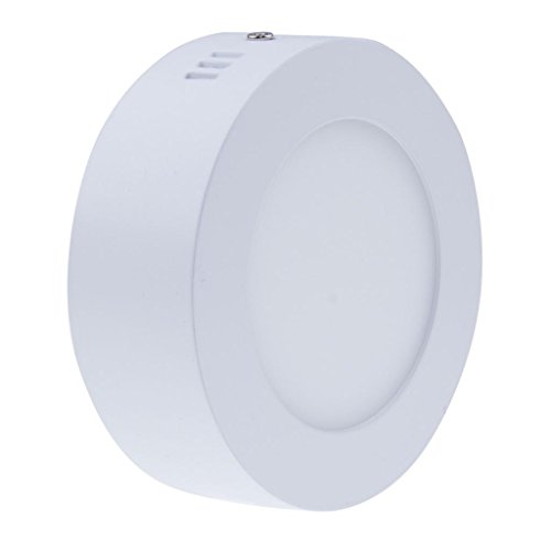 Bloomwin-2 X 6W Dimmable Surface Mounted Round LED Panel Light 220V Kithen Light Downlight Warm White