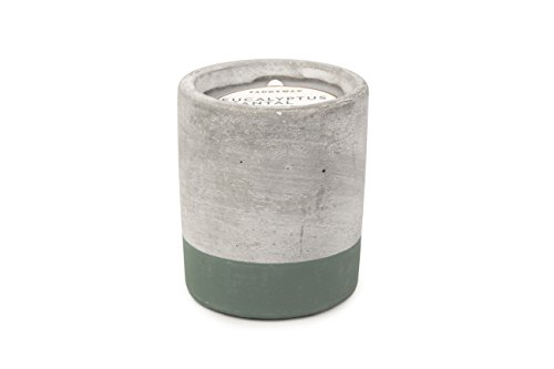 Paddywax Urban Collection Scented Soy Wax Candle, 3.5-Ounce, Eucalyptus & Santal - Soy Eucalyptus Scented Wax