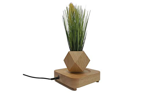 Micro Landscape Gardening Levitating Magnetic Floating Air Bonsai Pot (Dodecahedron) with Artificial Onion Grass