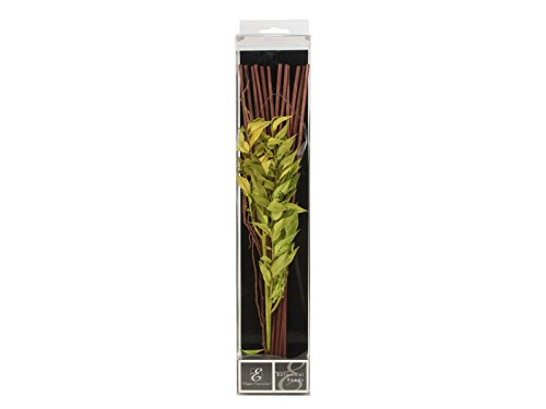 """Hosley Aromatherapy 12.5"""" High Botanical Diffuser Reeds - Gr"""