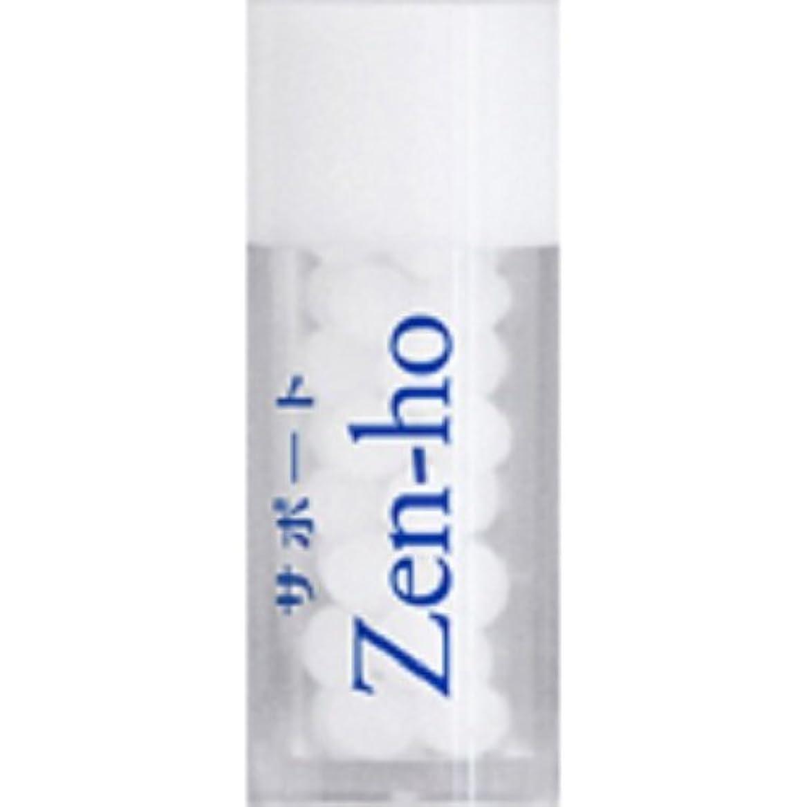 センサーパンフレットブレンドホメオパシージャパンレメディー サポートZen-ho(小ビン)