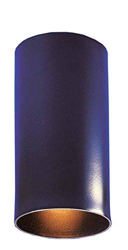 Volume Lighting V1015-5 Single Cylinder Ceiling Mount Spot Light ()
