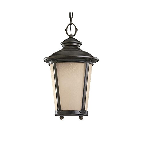 LED Outdoor Pendant (780 Sea Gull Lighting)