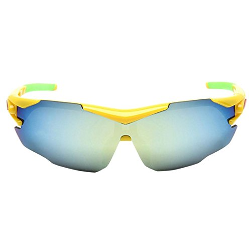 Sunglasses Polarized Sunglasses, VESNIBA Outdoor Cycling Glasses Bike Goggles Bicycle Sunglasses Polarized Sunglasses - F1 Sunglasses