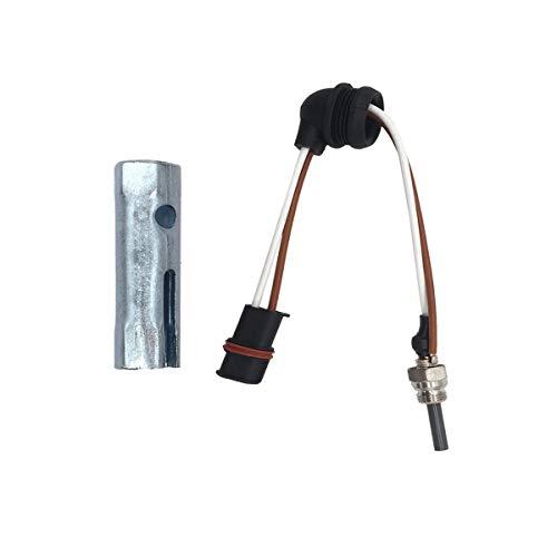 Eberspacher D2 D4 D4S Heater glow plug 12v Plus Tool and Screen 252069011300