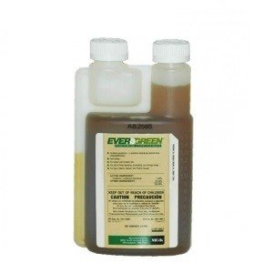 Evergreen Pyrethrum Concentrate, One Pint by MGK