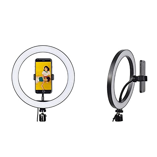 TRENDSTER LED Ring Light with Phone Holder, Round Light for Youtube Video Shooting, Tik Tok, Photography, Insta Reels Recording Circle Lights with Phone Stand, 3 Colors and 10 Brightness Level Control