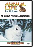 All About Animal Adaptations