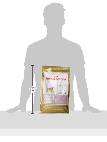 030111450609 - ROYAL CANIN BREED HEALTH NUTRITION Bulldog Puppy dry dog food, 6-Pound carousel main 5