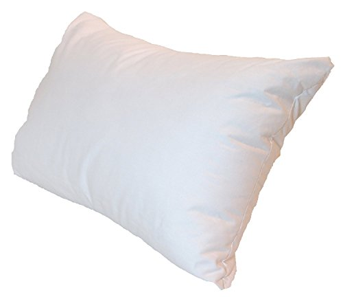 14x22 Inch Pillowflex Premium Polyester Filled Pillow Form Insert - Machine Washable - Oblong Rectangle - Made In USA - Euro Top 20