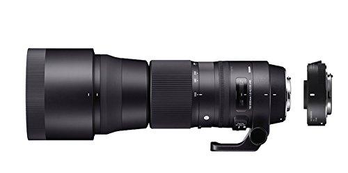 Sigma 150-600mm f5-6.3 DG HSM OS Contemporary for Nikon - 3