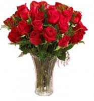 24 Red Long Stemmed Valentine Roses - Order by Feb 13th for Valentines Day Delivery