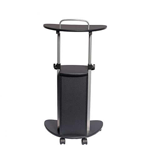 TECHNI MOBILI Sit-to-Stand Rolling Adjustable Height Laptop Cart With Storage - Graphite