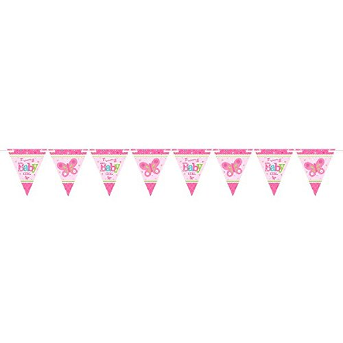 amscan Appealing Welcome Little One Girl with Ribbon 15' Pennant Banner Baby Shower Party Decorations, 6 x 7, Pink/White/Green/Blue