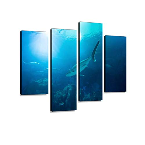 Fish Hanging Surface - Shark Ocean Coral Reef Underwater Water line Sunbeams Shining Surface Aquarium Canvas Wall Art Hanging Paintings Modern Artwork Abstract Picture Prints Home Decoration Designed Framed 4 Panel