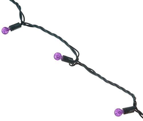 (Vickerman 50-Light G12 LED Light Set, Purple)