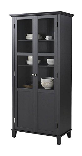 Amazon Homestar 2 Door Storage Cabinet Black China Cabinets