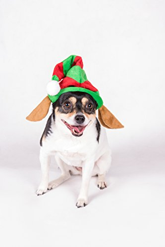 Clever Creations Puppy Dog Christmas Elf Hat | One Size Fits Most | Red and Green Striped Santa's Helper Elf Hat and Elf Ears | Measures 7