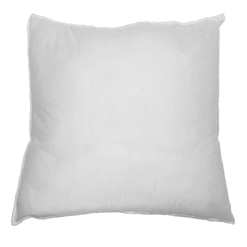"DreamHome - 18"" X 18"" Square Poly Pillow Insert (1, White) (2, White)"