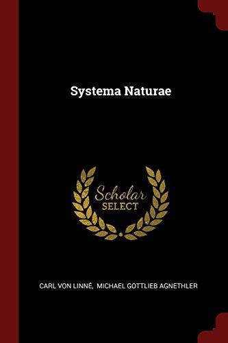 Systema Motor - Systema Naturae