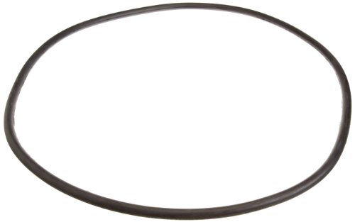 (Pentair 24850-0008 21-Inch Cord O-Ring for Tank Replacement for Select Sta-Rite Pool and Spa Filters)