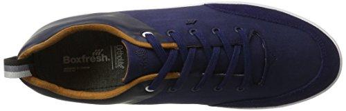 Boxfresh Men's Castel Sh Gdye/SDE NVY Trainers Blue (Blue) ocxG1w